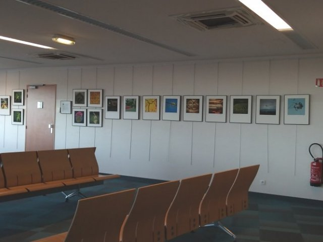 Exhibition «Invisible Beauties of Jurançon» in boarding lounge